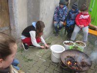 Am Feuer werden die verschiedenen Zapfen den Baeumen zugeordnet